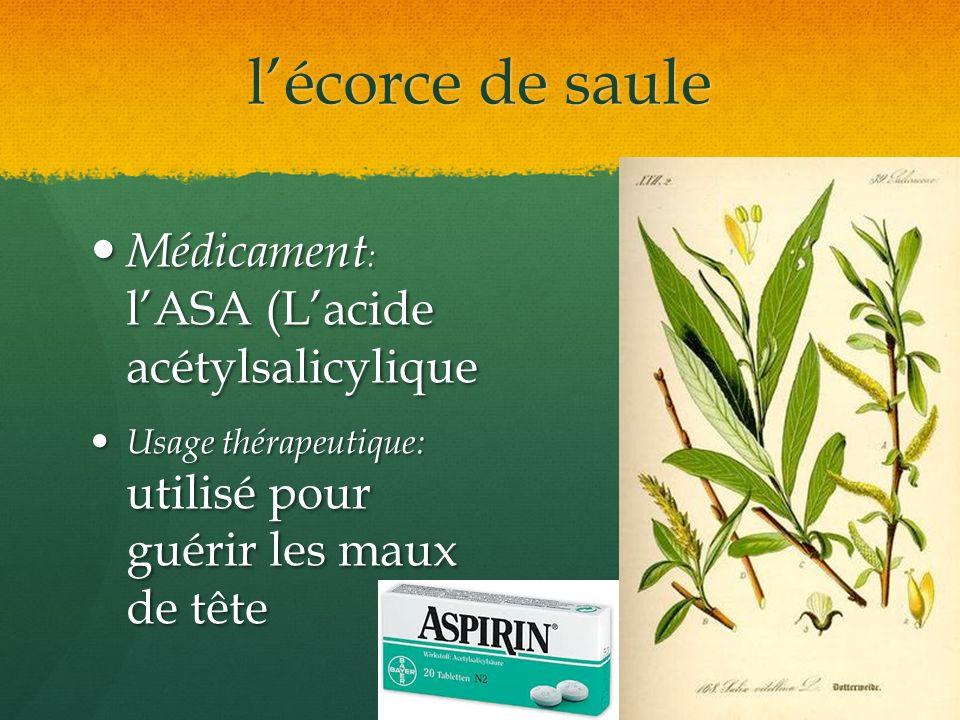 l'écorce de saule Médicament: l'ASA (L'acide acétylsalicylique