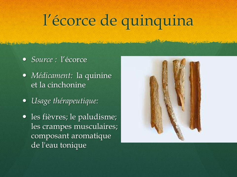 l'écorce de quinquina Source : l'écorce