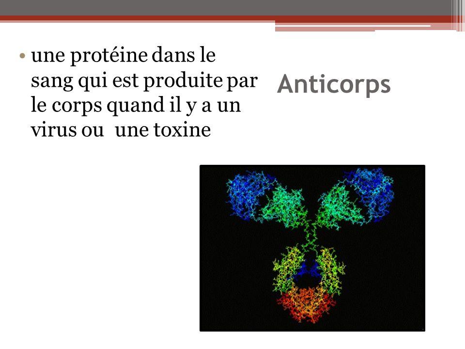 une protéine dans le sang qui est produite par le corps quand il y a un virus ou une toxine