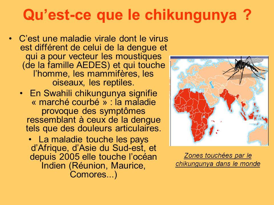 Qu'est-ce que le chikungunya