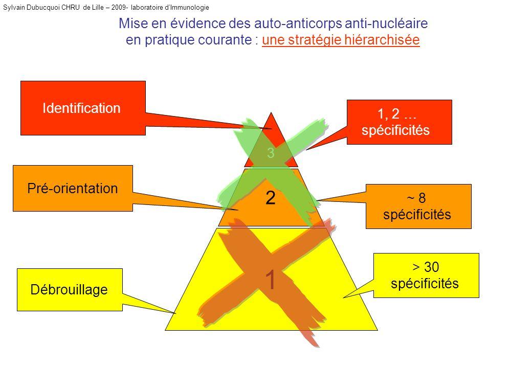 Mise en évidence des auto-anticorps anti-nucléaire en pratique courante : une stratégie hiérarchisée