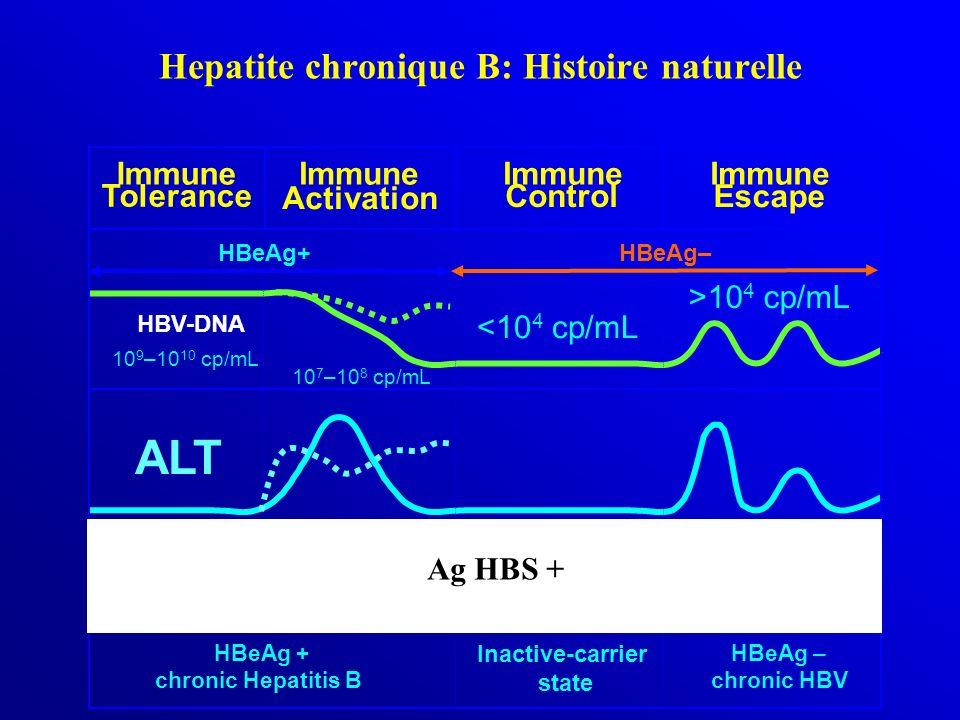 Hepatite chronique B: Histoire naturelle