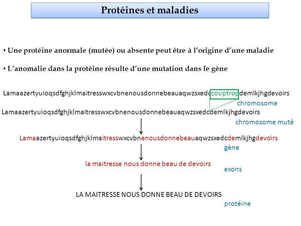 Protéines et maladies Une protéine anormale (mutée) ou absente peut être à l'origine d'une maladie.