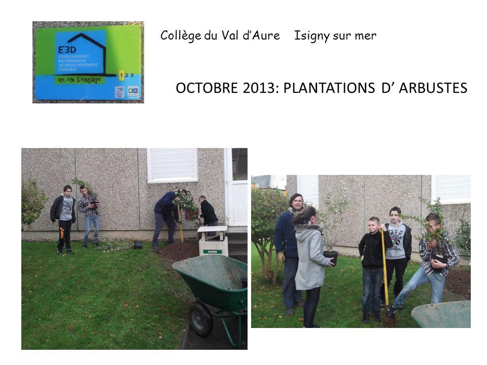 OCTOBRE 2013: PLANTATIONS D' ARBUSTES