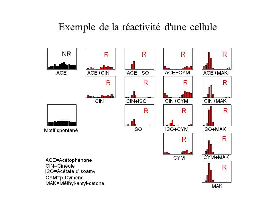 Exemple de la réactivité d une cellule