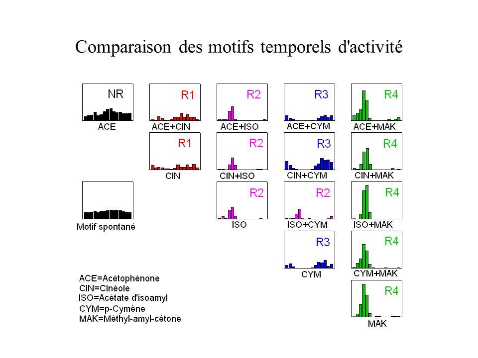 Comparaison des motifs temporels d activité