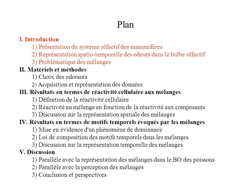 Plan I. Introduction. 1) Présentation du système olfactif des mammifères. 2) Représentation spatio-temporelle des odeurs dans le bulbe olfactif.
