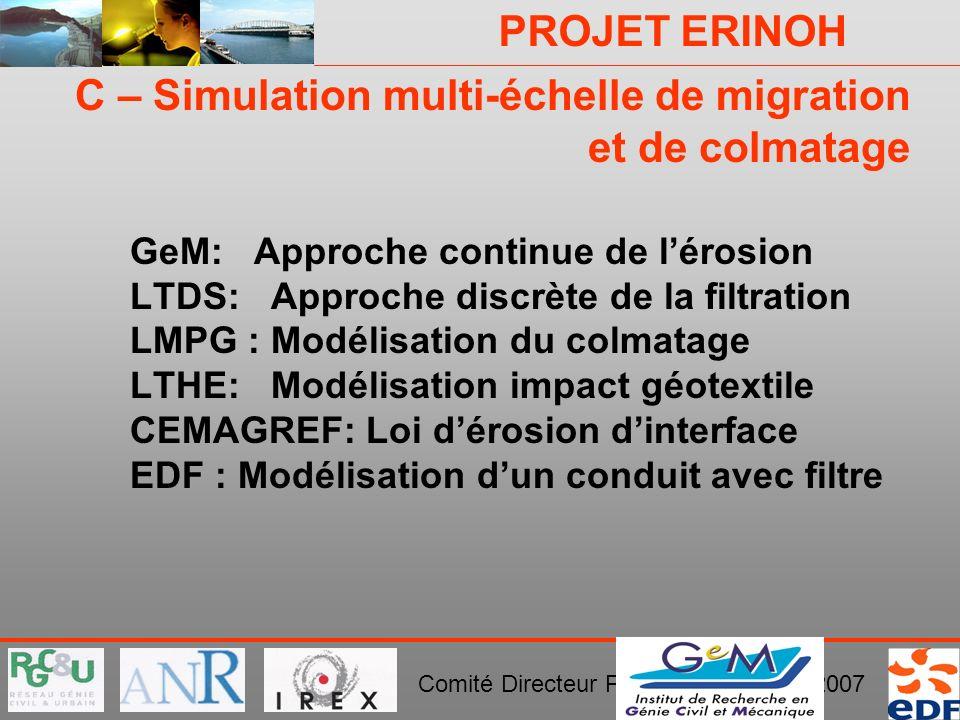 C – Simulation multi-échelle de migration et de colmatage