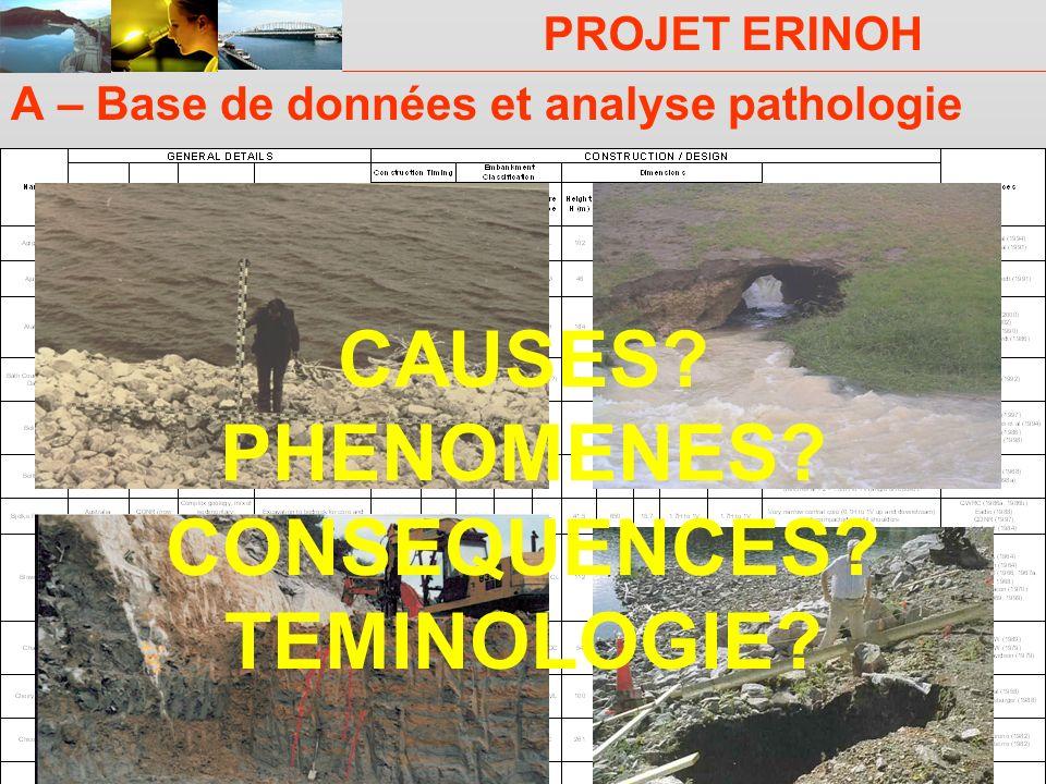 A – Base de données et analyse pathologie
