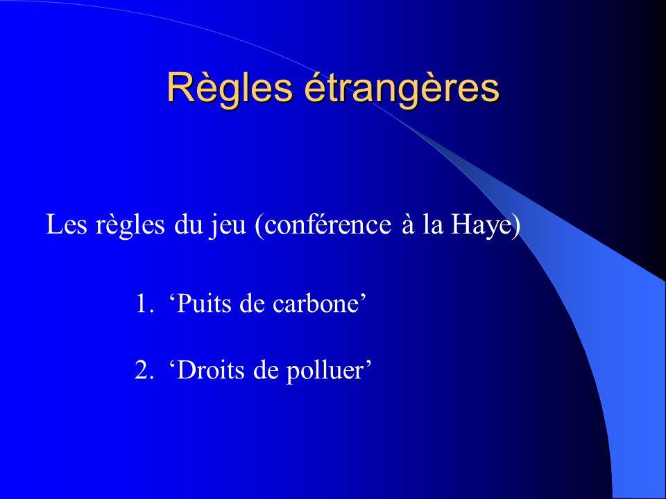 Règles étrangères Les règles du jeu (conférence à la Haye)