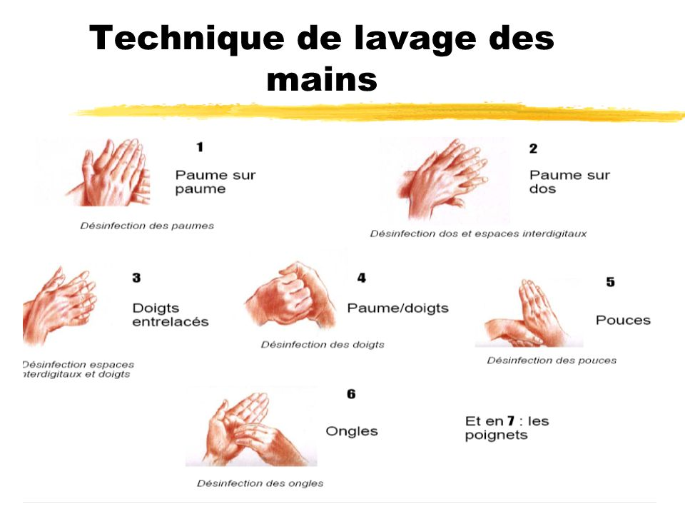 Technique de lavage des mains