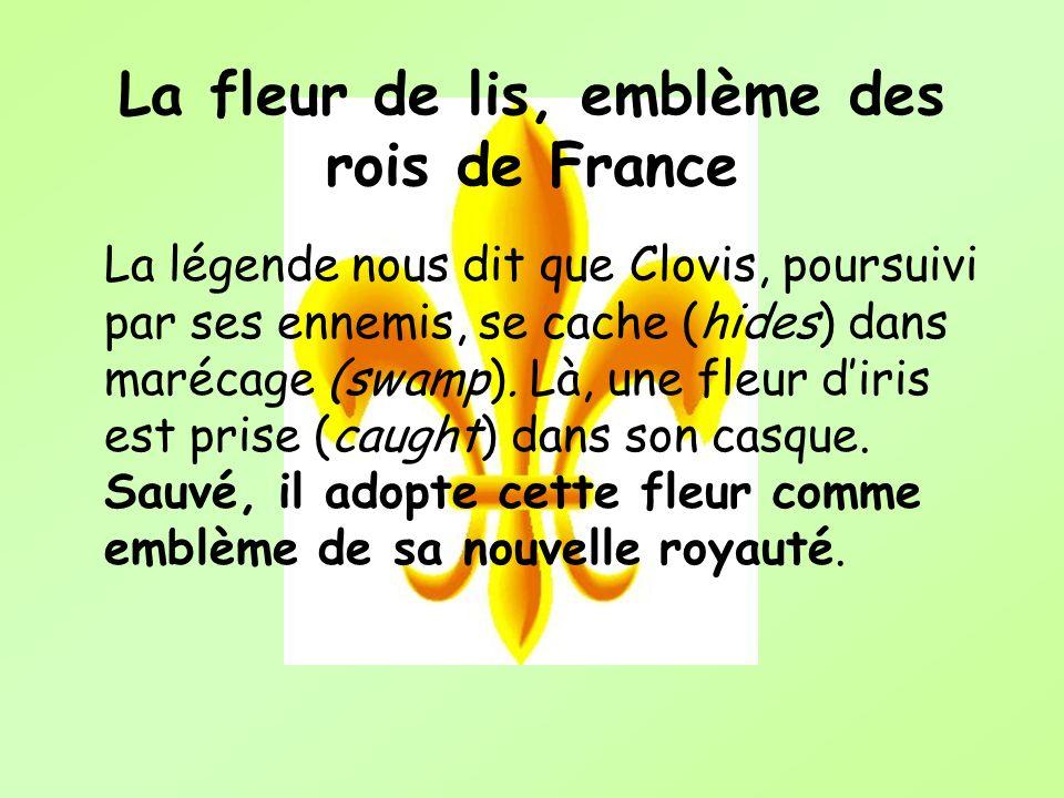 La fleur de lis, emblème des rois de France