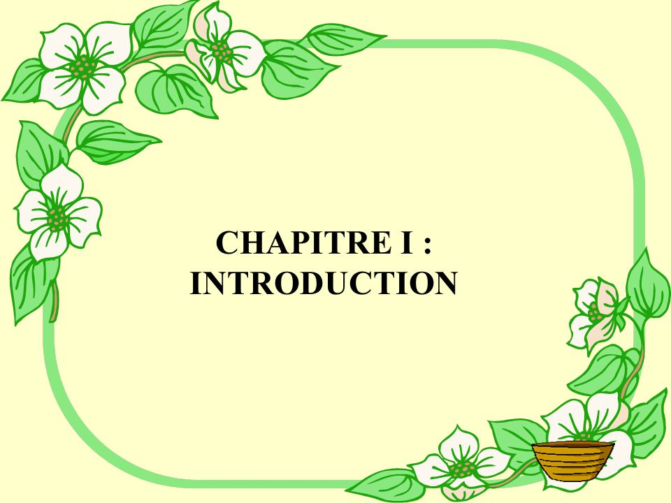 CHAPITRE I : INTRODUCTION