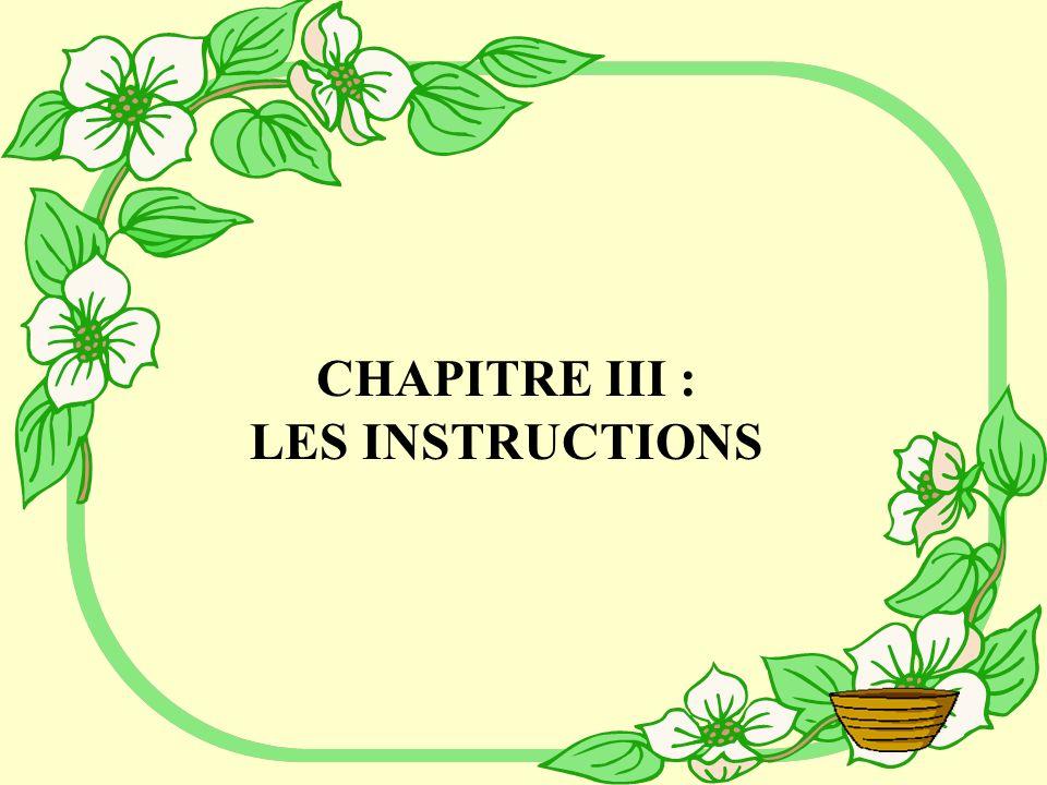 CHAPITRE III : LES INSTRUCTIONS