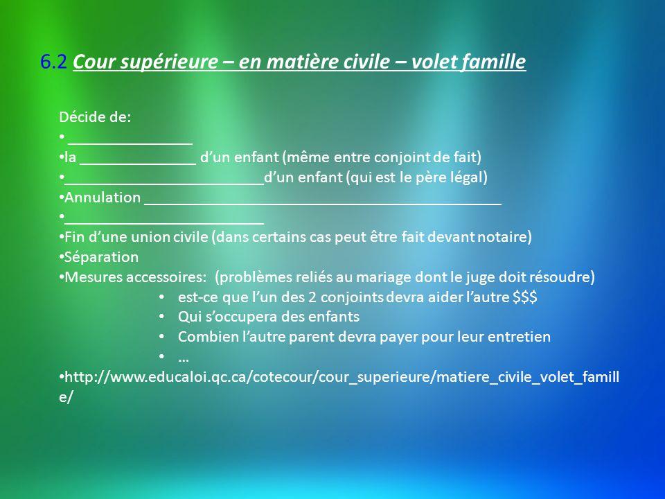 6.2 Cour supérieure – en matière civile – volet famille