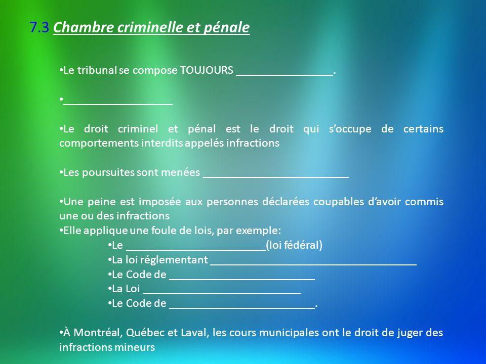 7.3 Chambre criminelle et pénale