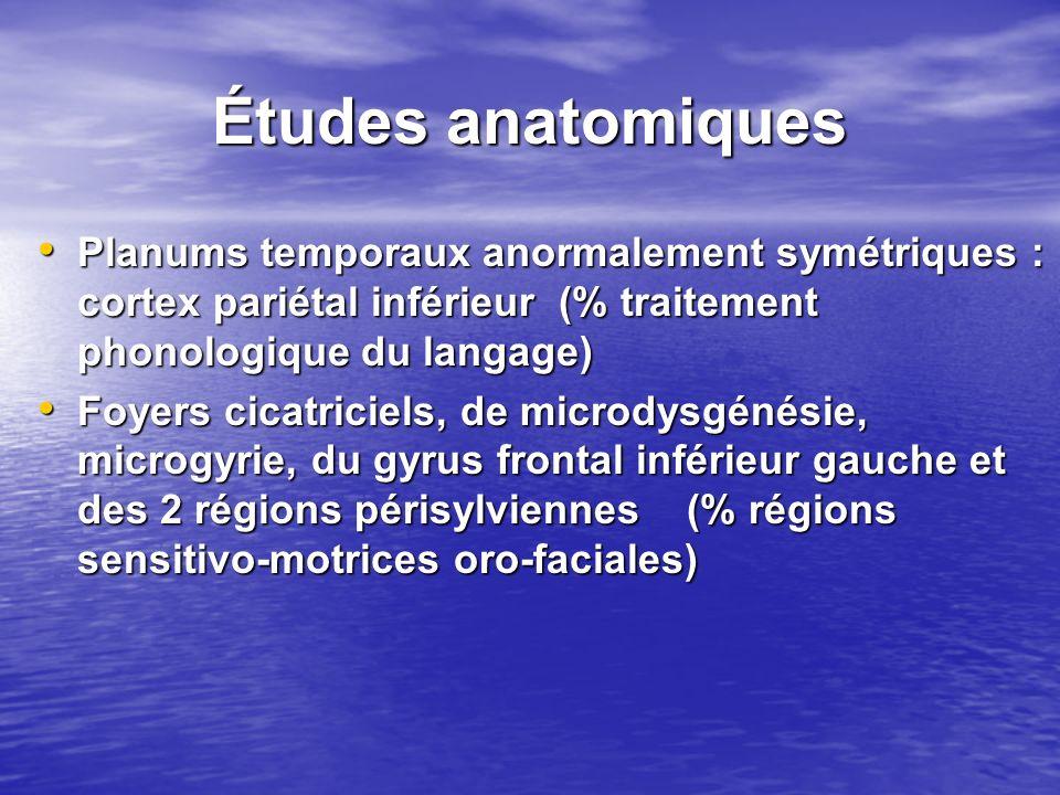 Études anatomiques Planums temporaux anormalement symétriques : cortex pariétal inférieur (% traitement phonologique du langage)