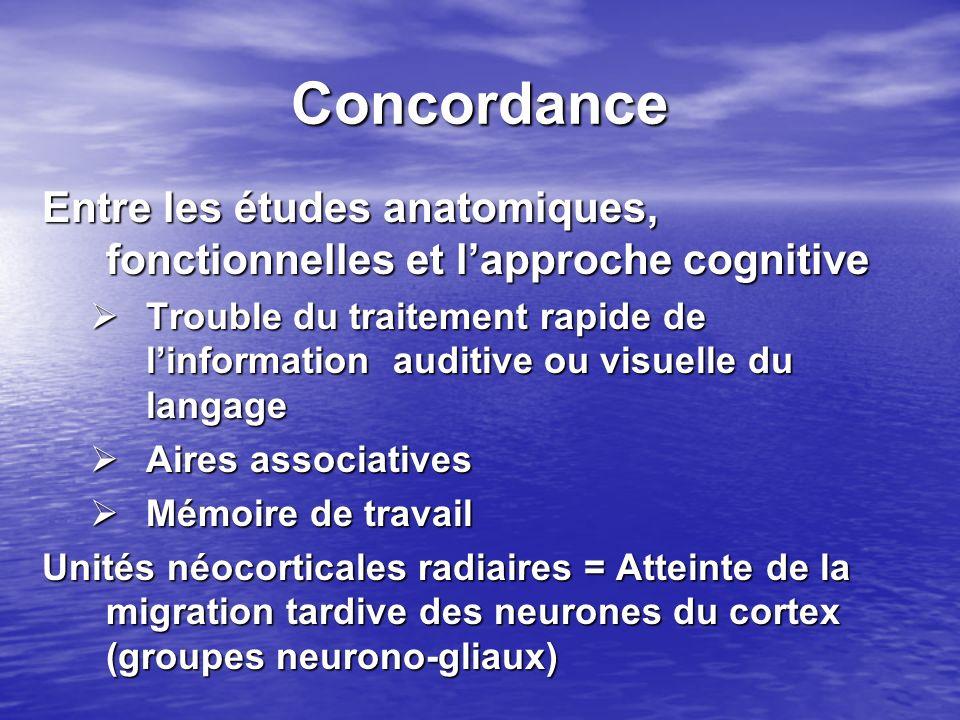 Concordance Entre les études anatomiques, fonctionnelles et l'approche cognitive.