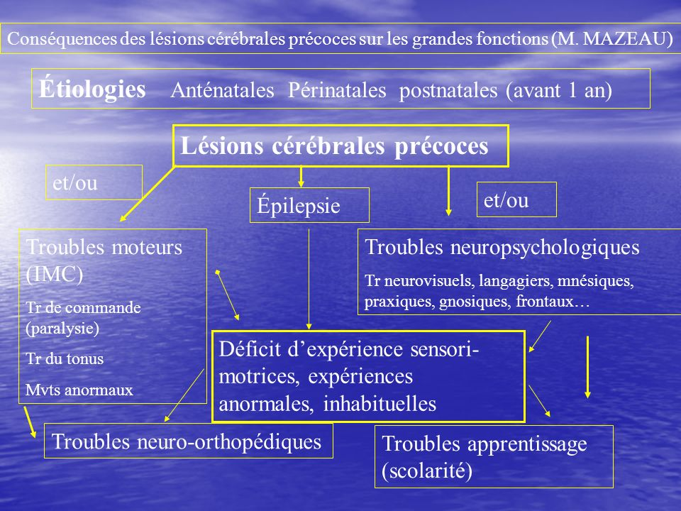 Étiologies Anténatales Périnatales postnatales (avant 1 an)