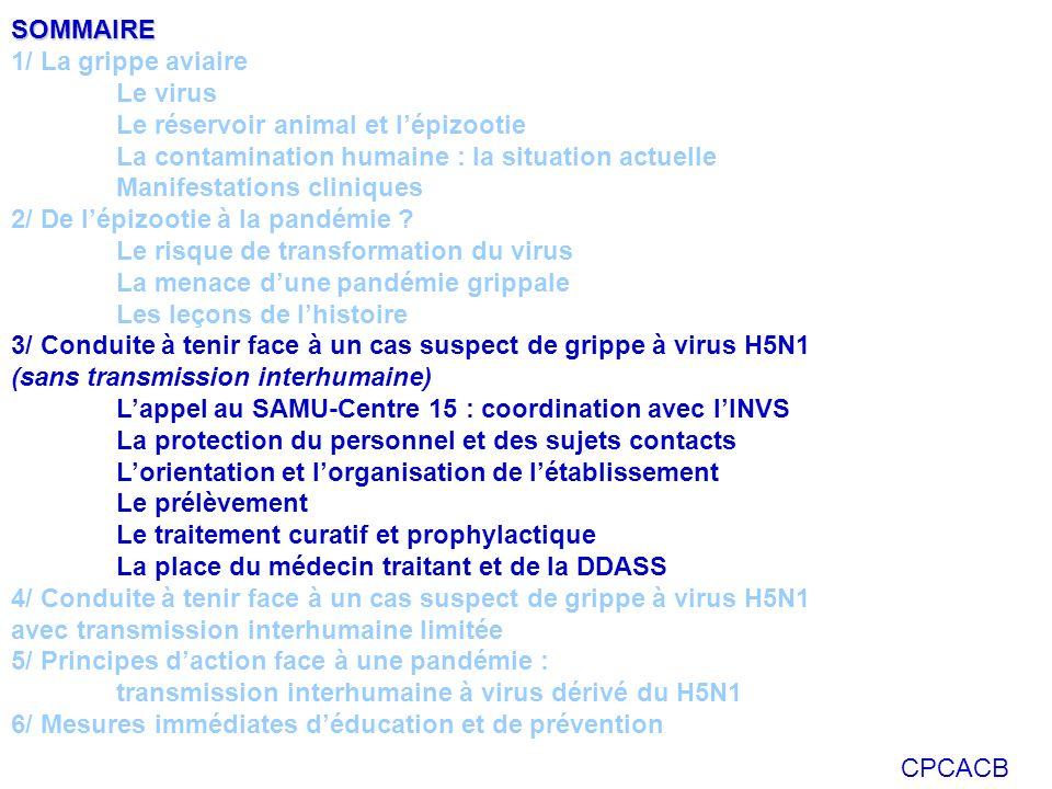 SOMMAIRE 1/ La grippe aviaire. Le virus. Le réservoir animal et l'épizootie. La contamination humaine : la situation actuelle.
