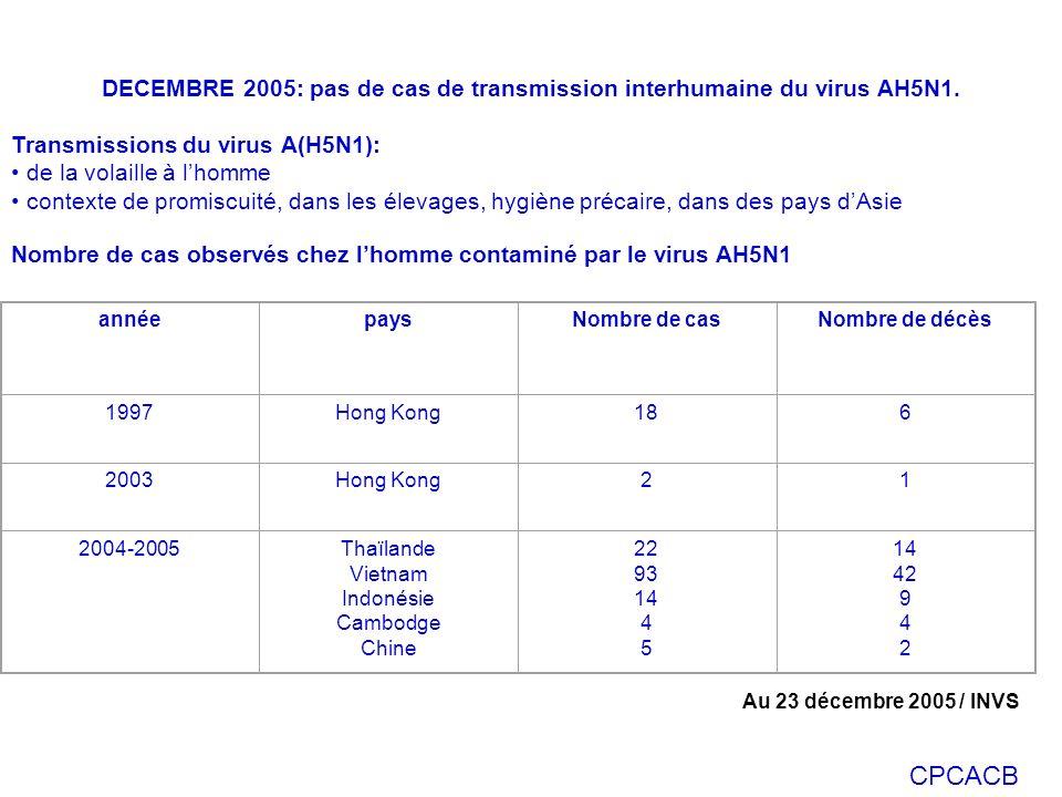 DECEMBRE 2005: pas de cas de transmission interhumaine du virus AH5N1.
