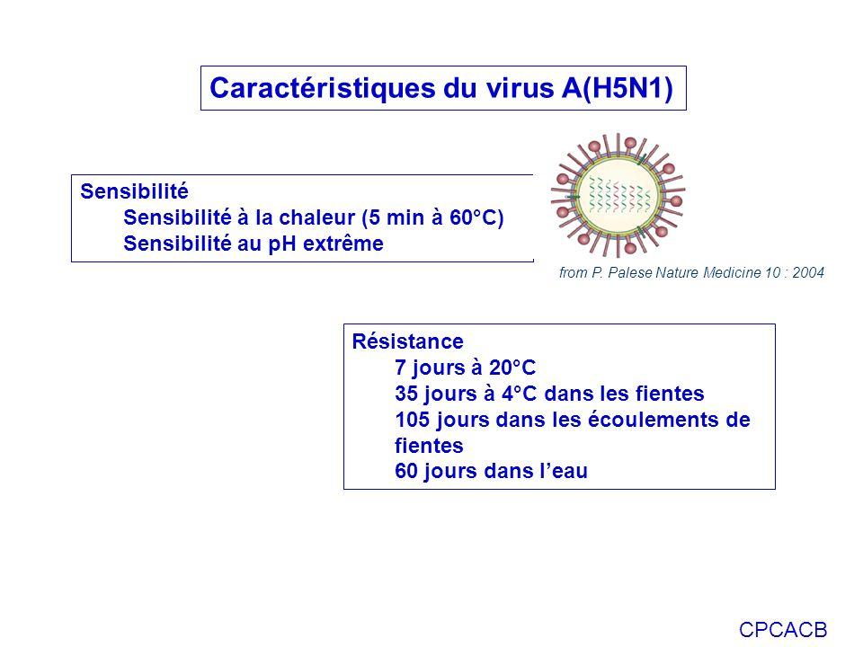 Caractéristiques du virus A(H5N1)