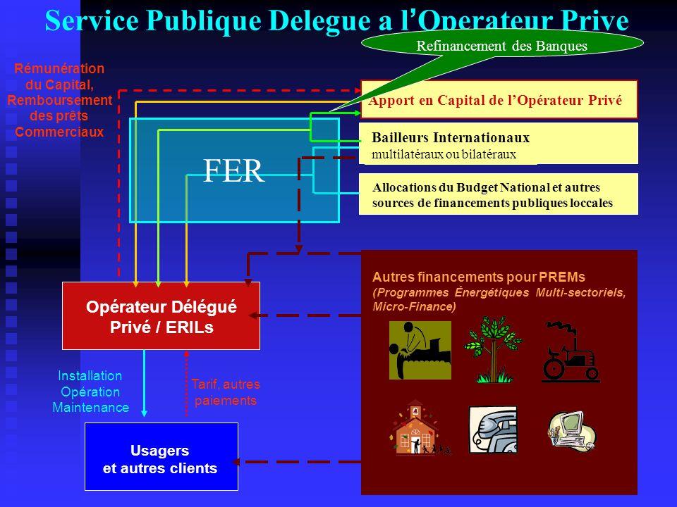 Service Publique Delegue a l'Operateur Prive