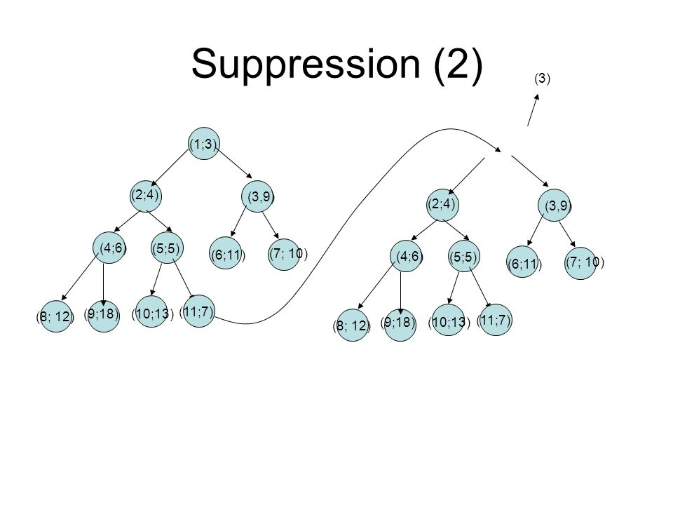 Suppression (2) (3) (1;3) (3,9) (2;4) (4;6) (5;5) (6;11) (7; 10)