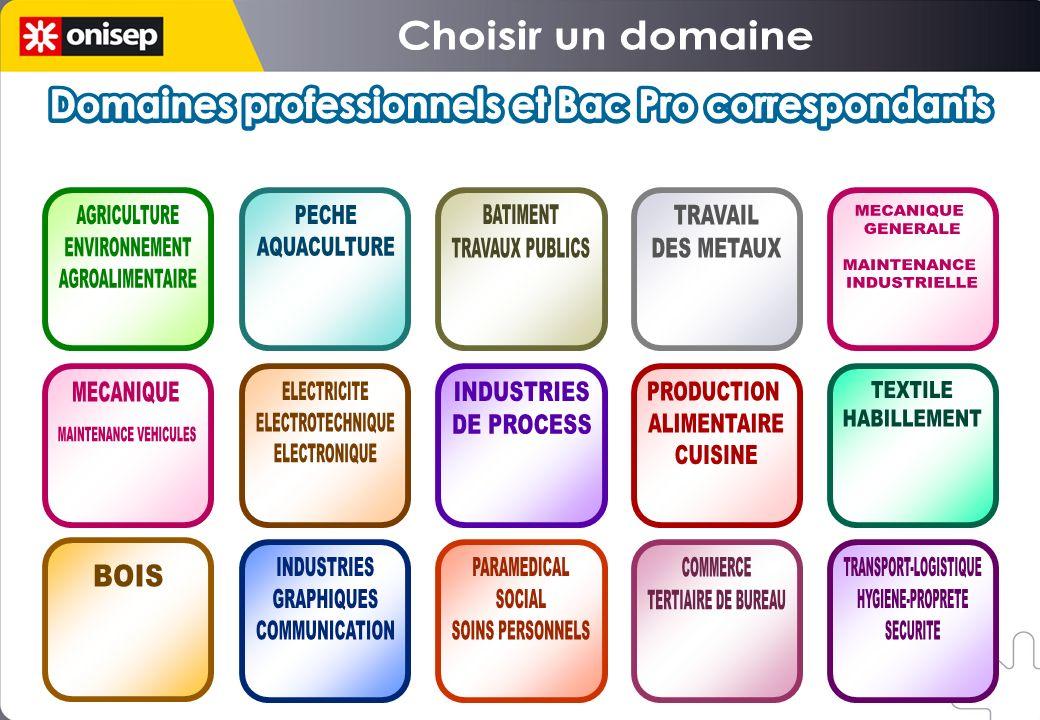 Domaines professionnels et Bac Pro correspondants