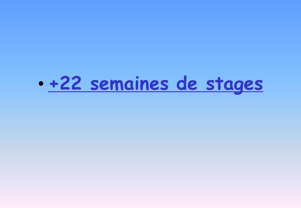 +22 semaines de stages