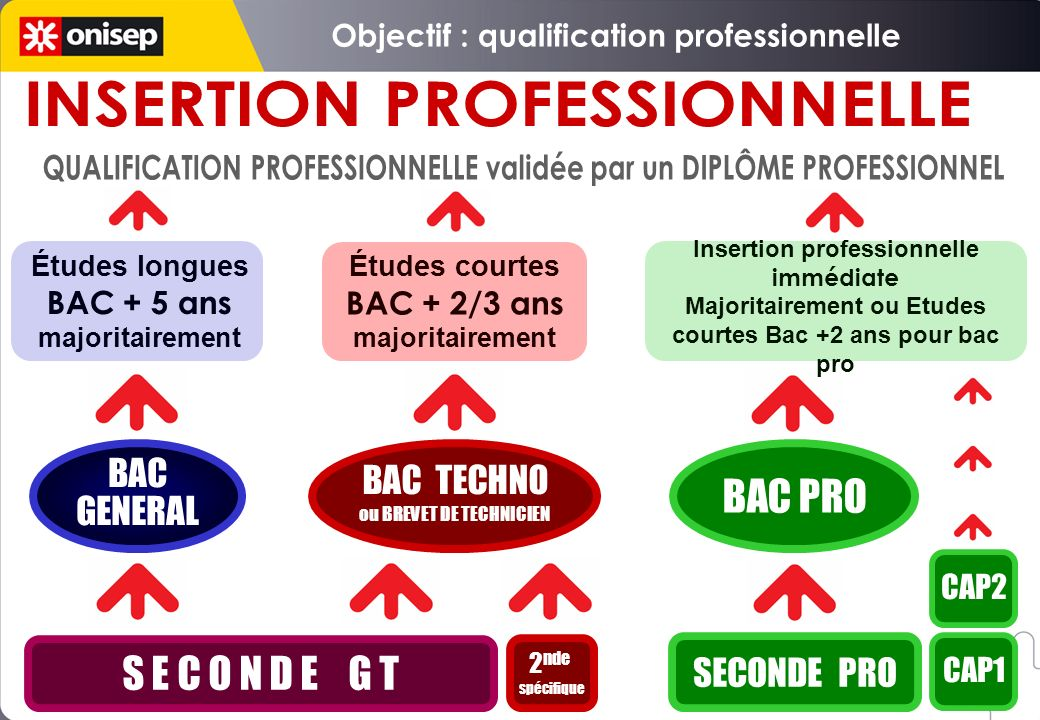 Objectif : qualification professionnelle INSERTION PROFESSIONNELLE