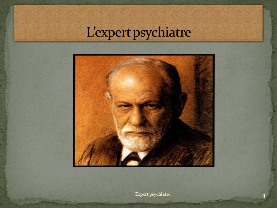 L'expert psychiatre Expert psychiatre