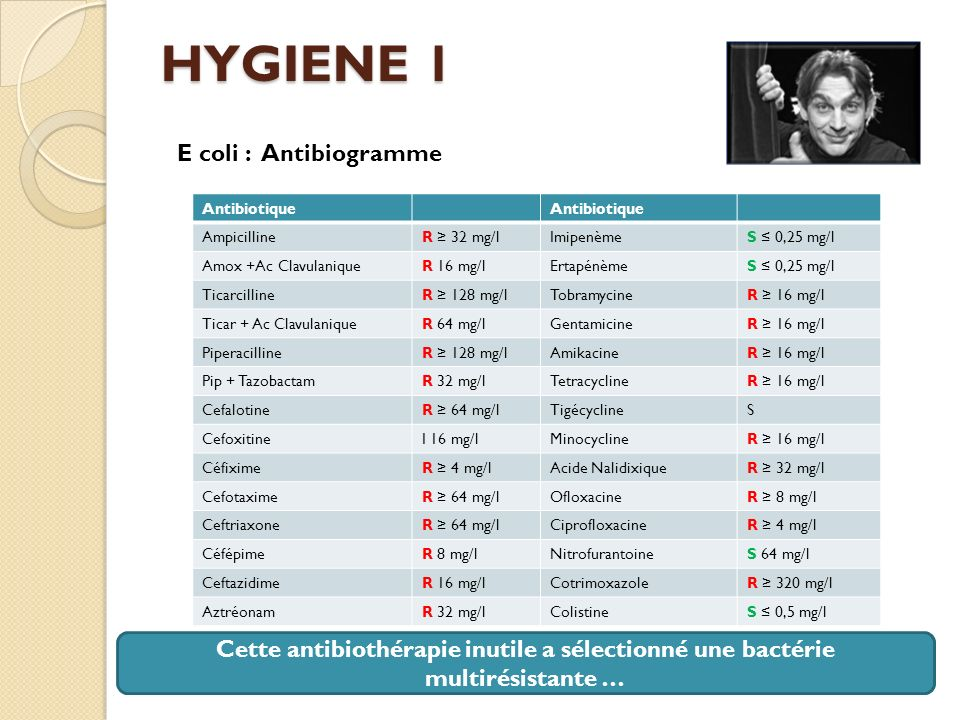 HYGIENE 1 E coli : Antibiogramme
