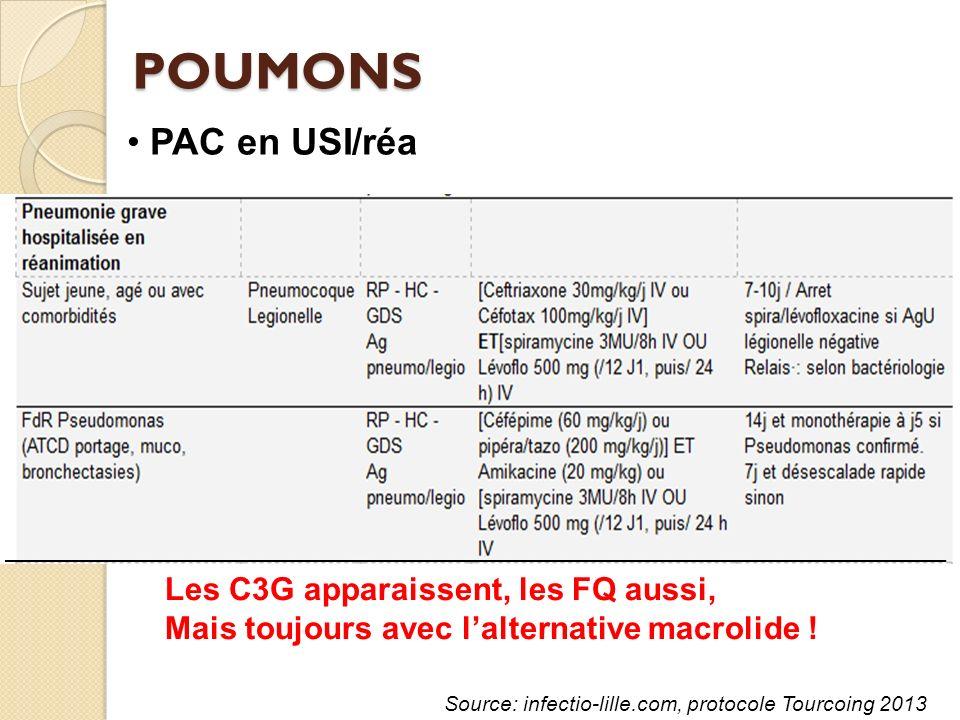 POUMONS PAC en USI/réa Les C3G apparaissent, les FQ aussi,