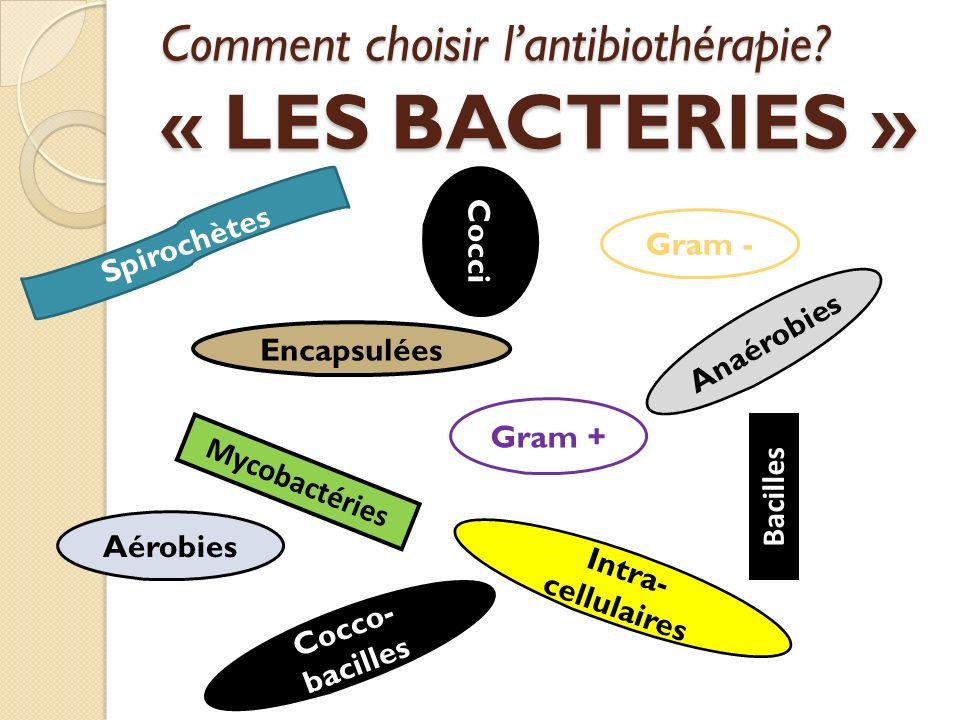 Comment choisir l'antibiothérapie « LES BACTERIES »