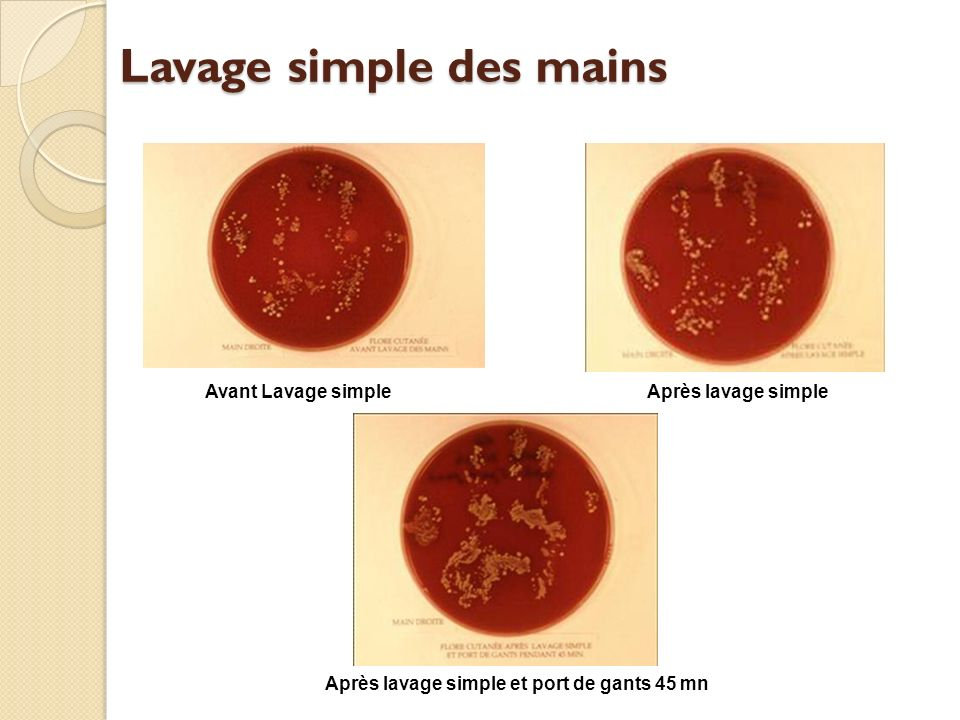 Lavage simple des mains