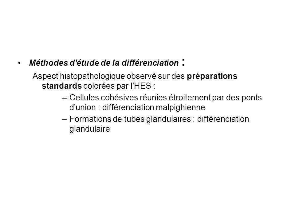 Méthodes d étude de la différenciation :