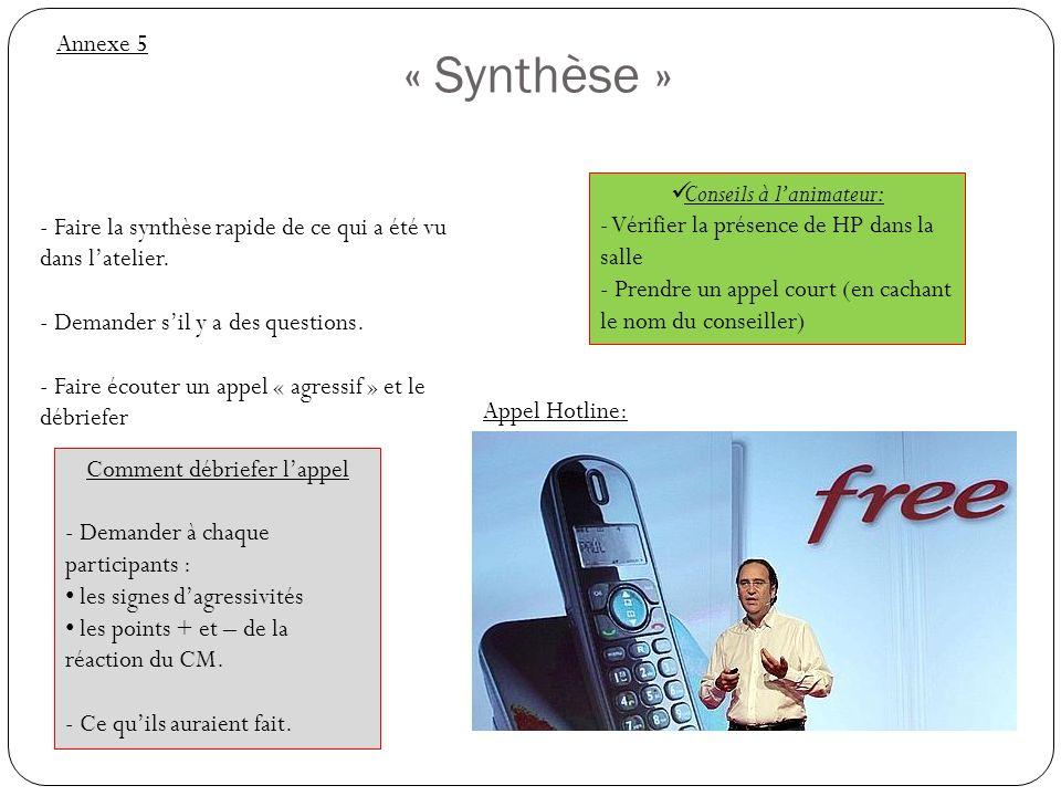 « Synthèse » Annexe 5 Conseils à l'animateur: