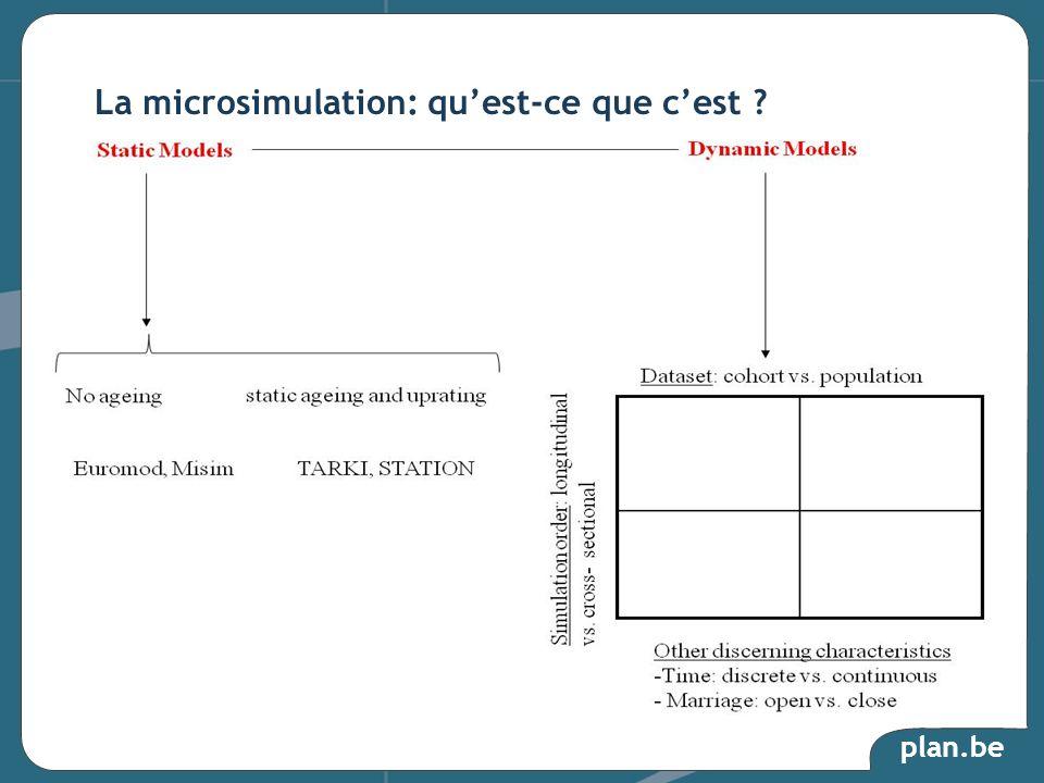 La microsimulation: qu'est-ce que c'est