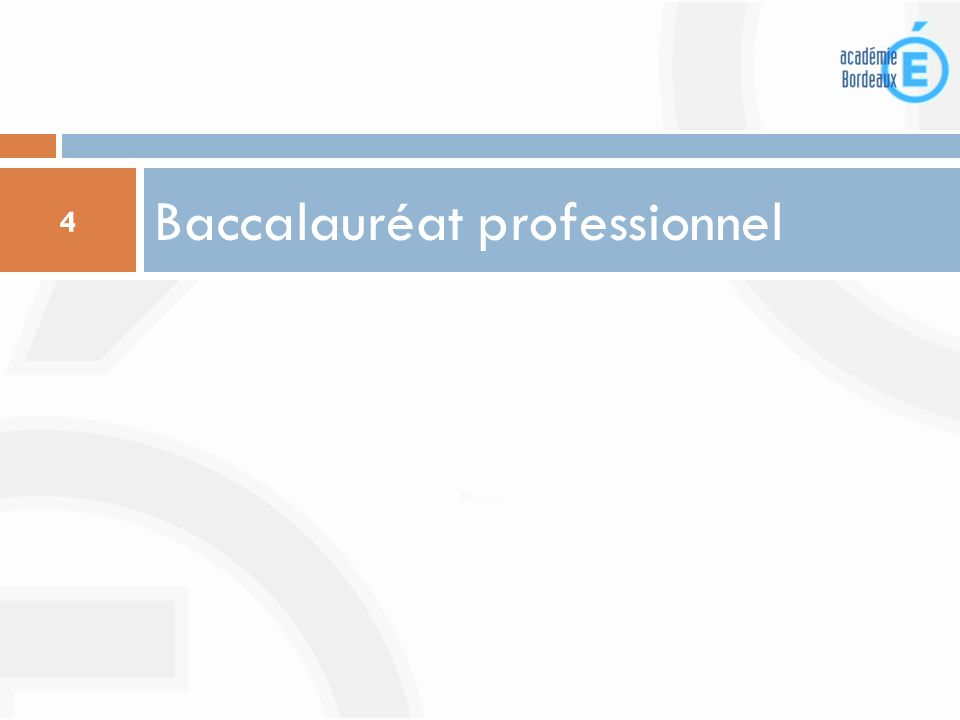 Baccalauréat professionnel