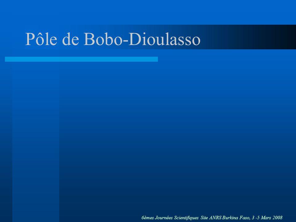 Pôle de Bobo-Dioulasso