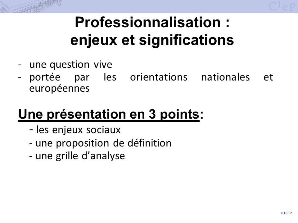 Professionnalisation : enjeux et significations