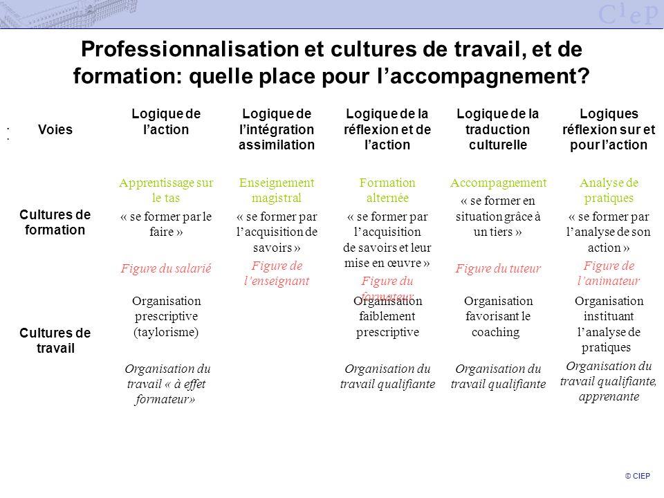 Professionnalisation et cultures de travail, et de formation: quelle place pour l'accompagnement