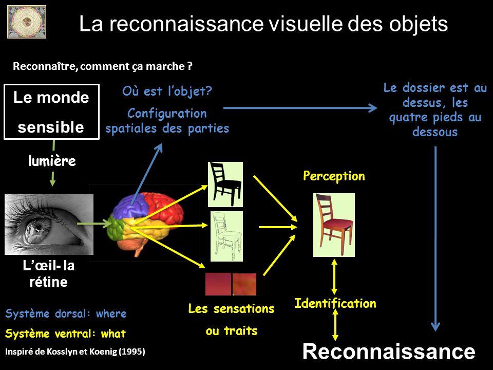 La reconnaissance visuelle des objets