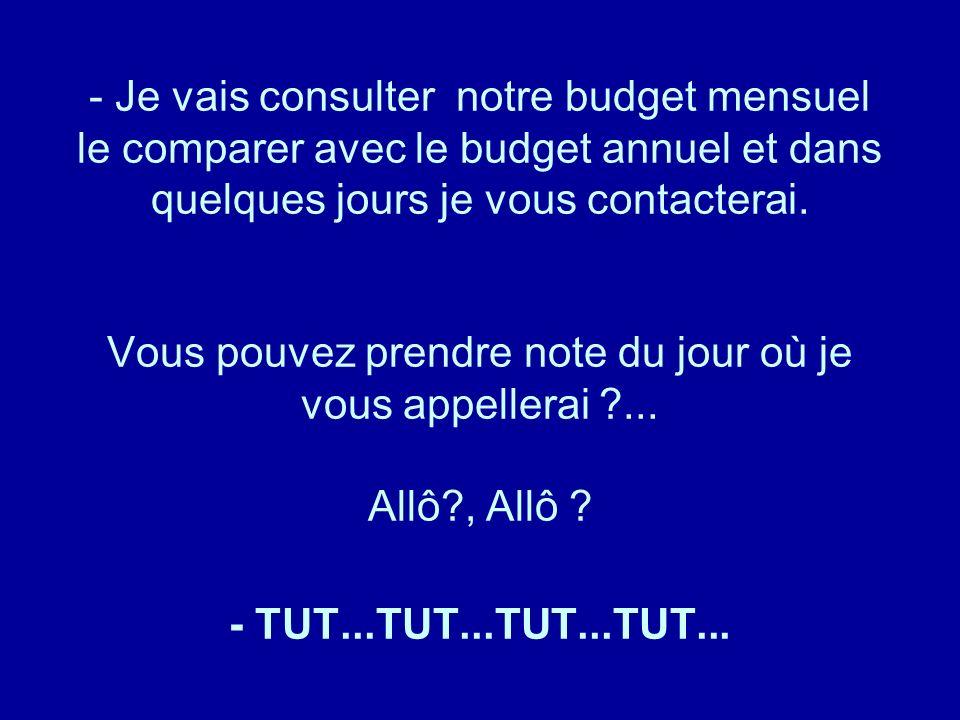 Je vais consulter notre budget mensuel le comparer avec le budget annuel et dans quelques jours je vous contacterai. Vous pouvez prendre note du jour où je vous appellerai ... Allô , Allô - TUT...TUT...TUT...TUT...