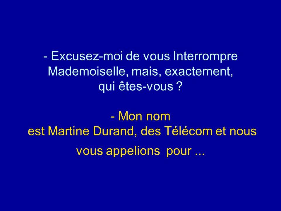 Excusez-moi de vous Interrompre Mademoiselle, mais, exactement, qui êtes-vous - Mon nom est Martine Durand, des Télécom et nous vous appelions pour ...
