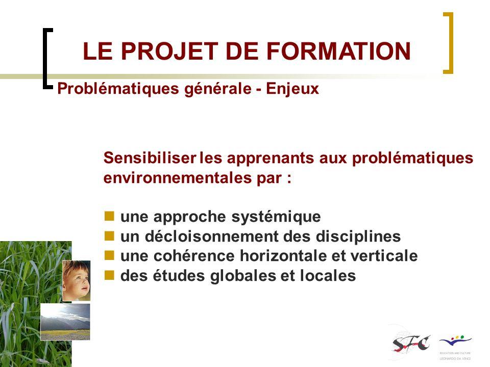 LE PROJET DE FORMATION Problématiques générale - Enjeux