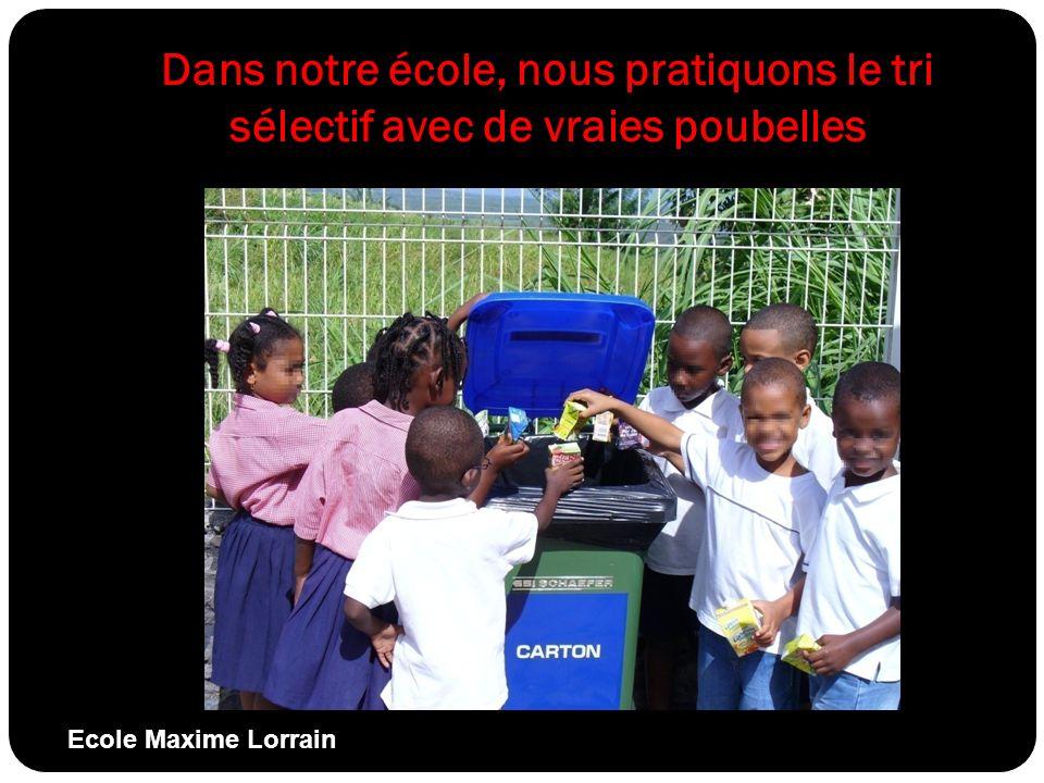 Dans notre école, nous pratiquons le tri sélectif avec de vraies poubelles