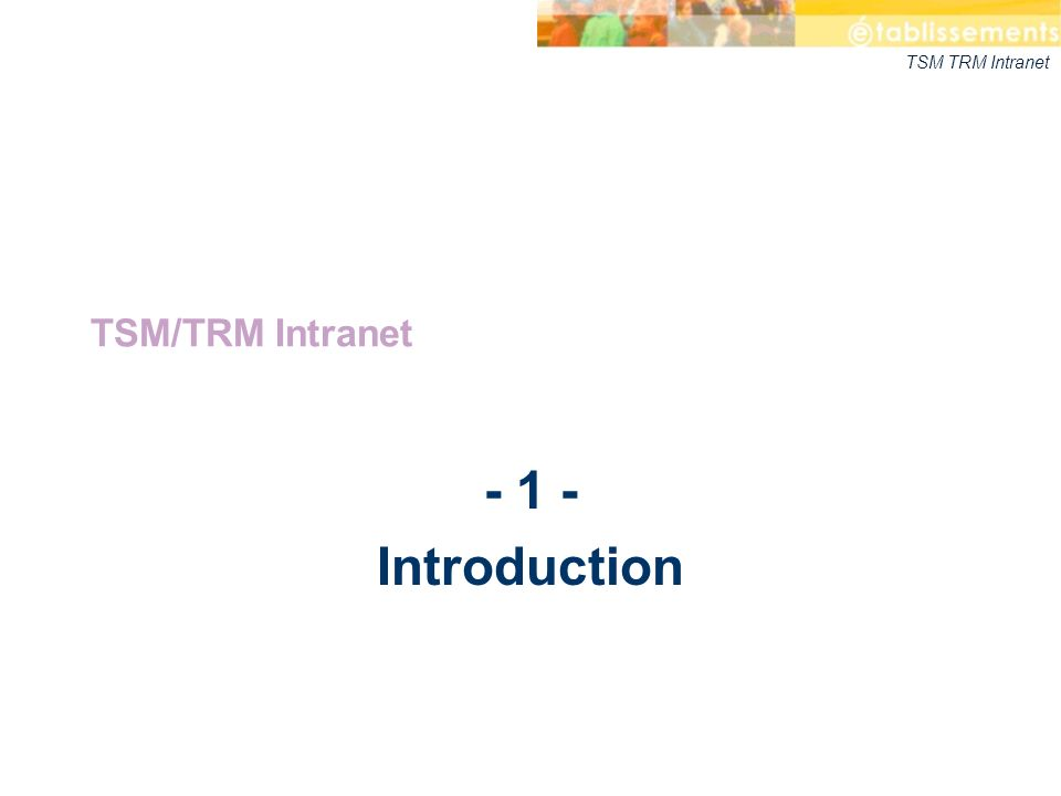 TSM/TRM Intranet - 1 - Introduction