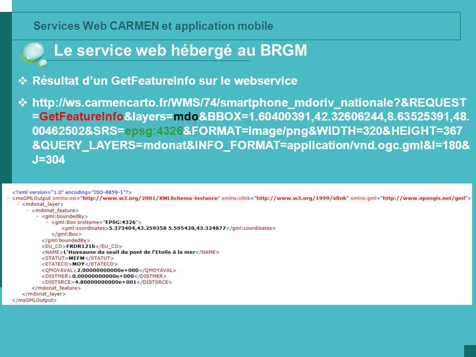 Le service web hébergé au BRGM